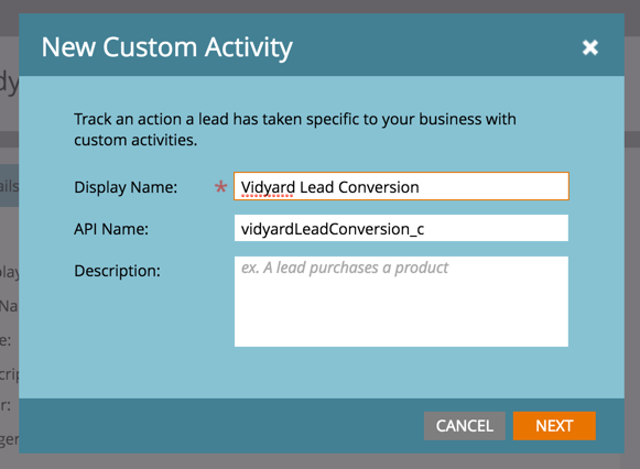 A popup window gives the Custom Activity Display Name and API name options.  API name is auto-filled.