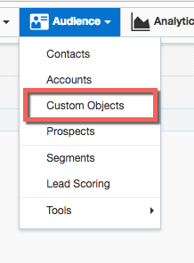 In the Audience menu, click Custom Objects.