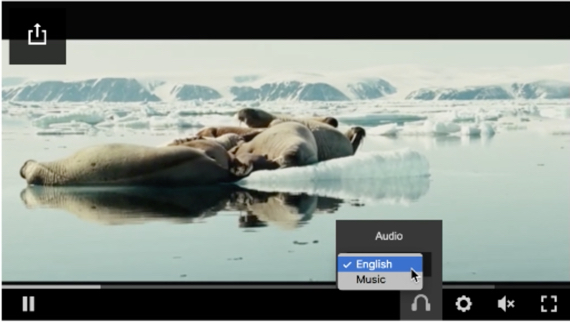 The video player controls show a headphones icon, which when clicked displays two audio options.