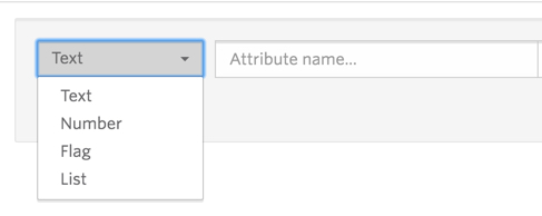 The dropdown list for Attribute type has four options: Text, Numbers, Flag, List.