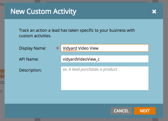 A popup window gives the Custom Activity Display Name and API name options. The API name is auto-filled.