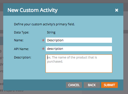 The Data Type field is a dropdown menu, the Name and API Name fields are text fields.