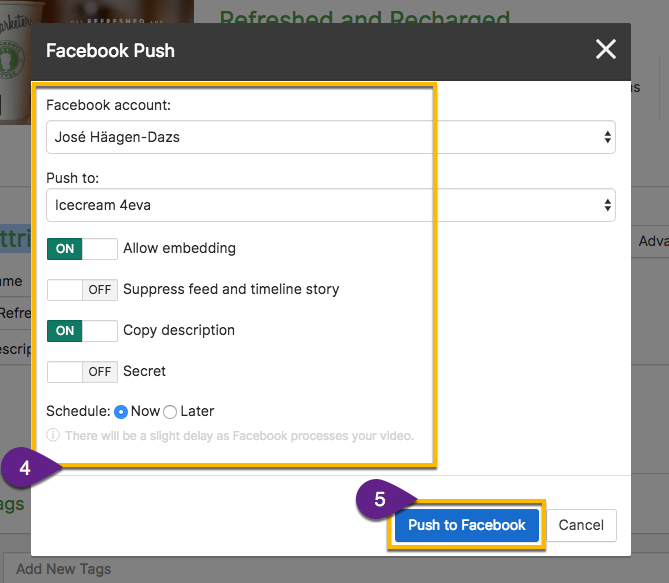Options for a pushing a video to Facebook, including account, page, scheduling, etc.