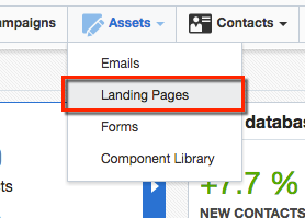 Click Landing Page in Assets menu.