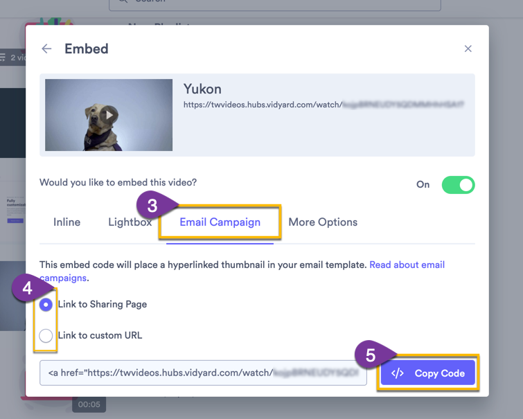 Copying the Email Campaign embed code option