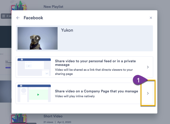 Choosing the option to share the video to a page that your Facebook account manages