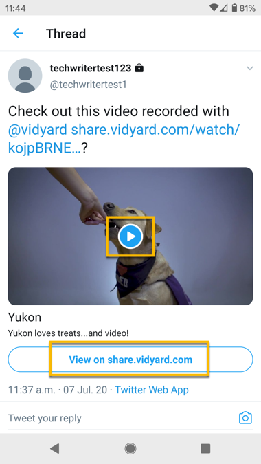 The detailed view when you select a Tweet with a video on the Twitter mobile app